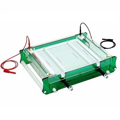 英国Scieplas等电聚焦电泳IEF-SYS