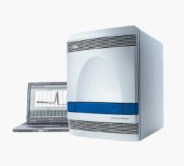 ABI7500荧光定量PCR仪