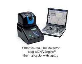 伯乐Chromo4型荧光定量PCR仪