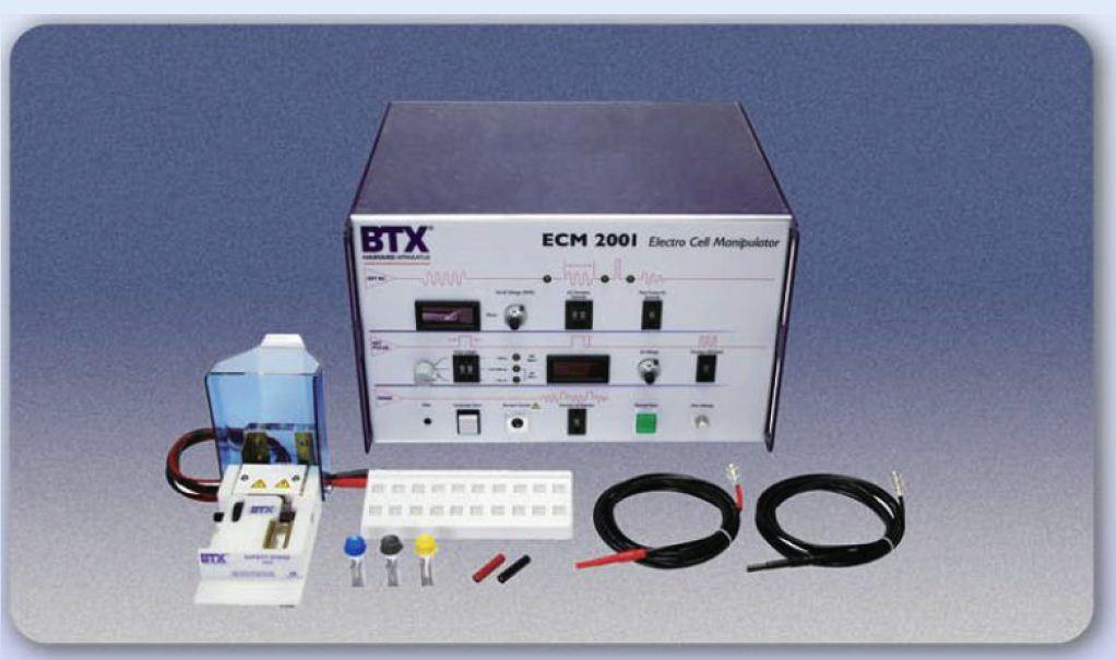 BTX ECM2001 细胞电融合&电穿孔仪