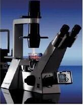 Axiovert 40C/CFL倒置式显微镜