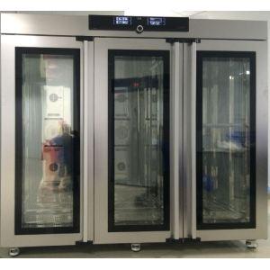 IPP2200plus半导体低温培养箱